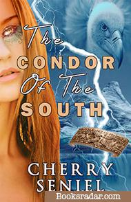 The Condor of the South